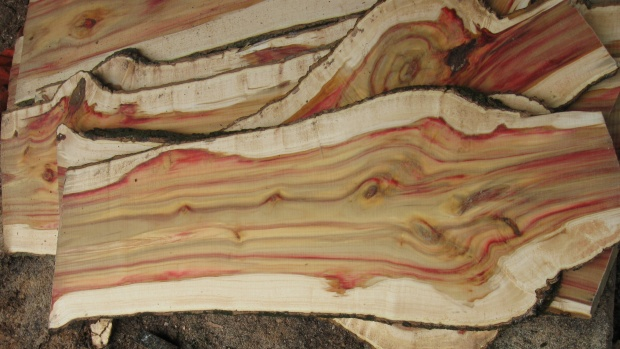 Flame Boxelder milled - Woodworking Talk - Woodworkers Forum