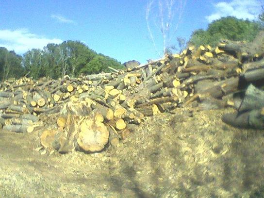 Any Sawmills Near Long Island Ny Woodworking Talk