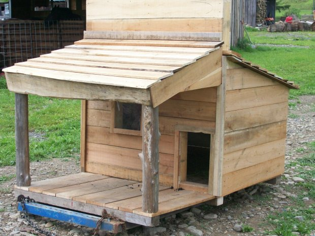 pygmy goat house,, - Woodworking Talk - Woodworkers Forum