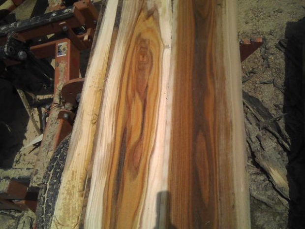 Image Is Loading Wormy Elm Lumber