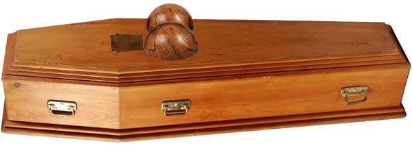 Anybody ever build a coffin?-annanicole.jpg