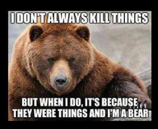 annoying-bear.jpg