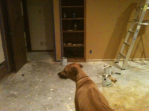 Ideas for leftover wood flooring-before.jpg