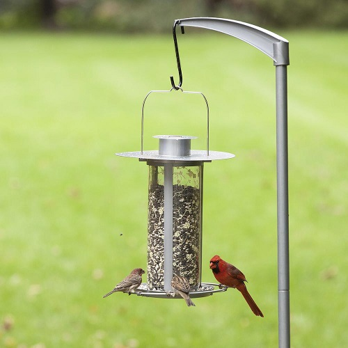 Name:  Bird Feeder.jpg
