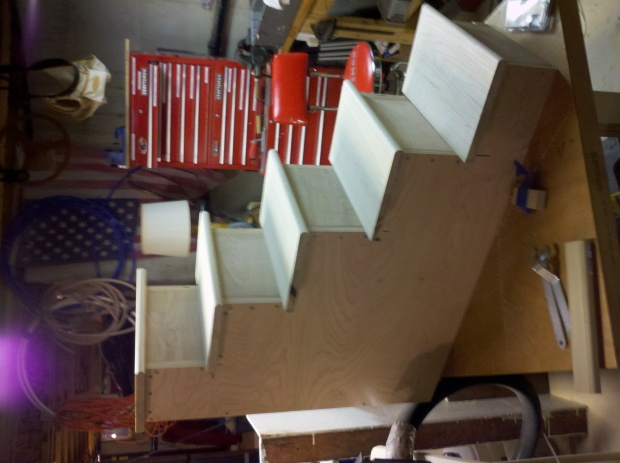 Cat step project trim ideas needed-cat-steps-finished.jpg