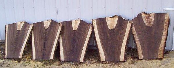 Cutting And Storing A Walnut Tree Woodworking Talk