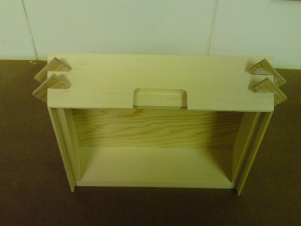 Alternative Methods Challenge - truly slantsided box-dsc00425.jpg