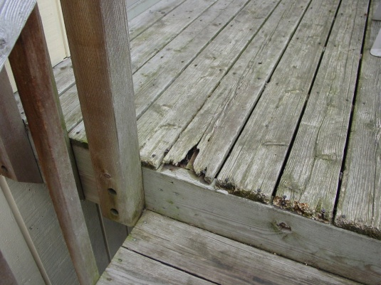 My experience with Menards Ultradeck Reversible composite decking-dsc07021-copy.jpg