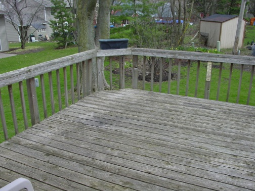 My experience with Menards Ultradeck Reversible composite decking-dsc07022-copy.jpg