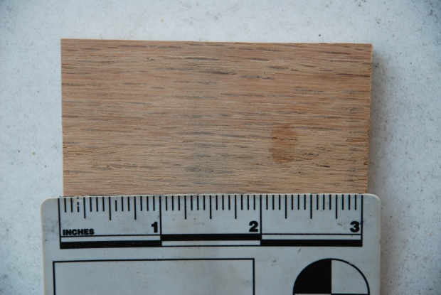 Cottonwood?-dsc_0227.jpg