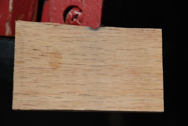 Cottonwood?-dsc_0229.jpg