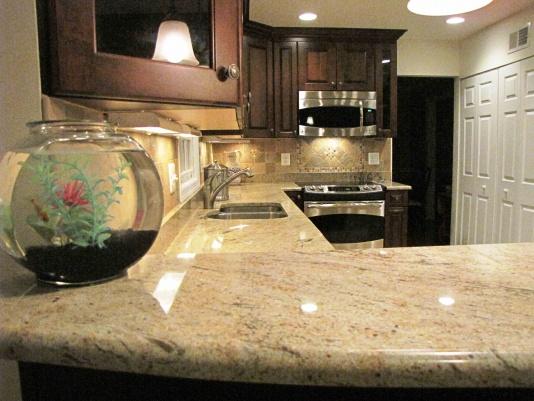 Kitchen cabinet challenge-endview.jpg