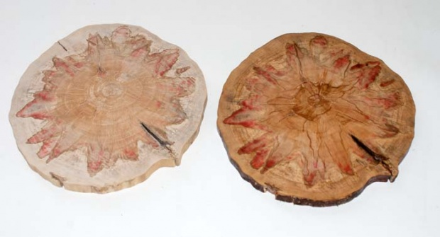 How to utilize this flame box elder small log-flame_box_elder_cookie_comparison_1060.jpg
