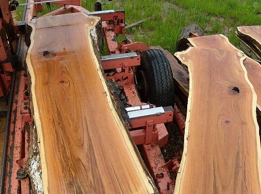 Spalted Honeylocust Woodworking Talk Woodworkers Forum