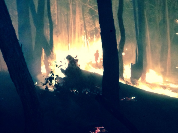 Bush Fire Season Down Under-image-1156125459.jpg