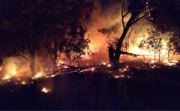 Bush Fire Season Down Under-image-3452554650.jpg