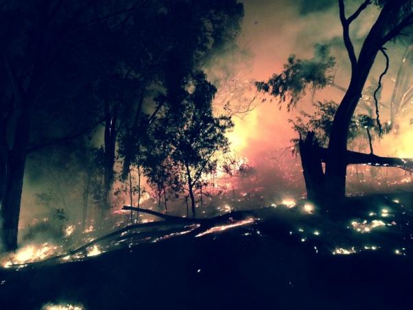 Bush Fire Season Down Under-image-420553041.jpg