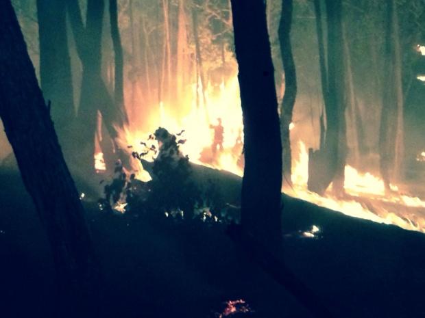 Bush Fire Season Down Under-image-741524388.jpg