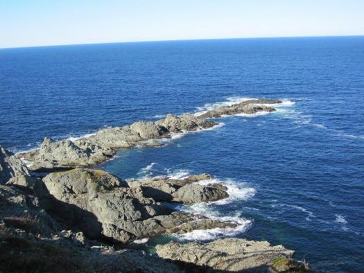Newfoundland, Canada-img_6285.jpg