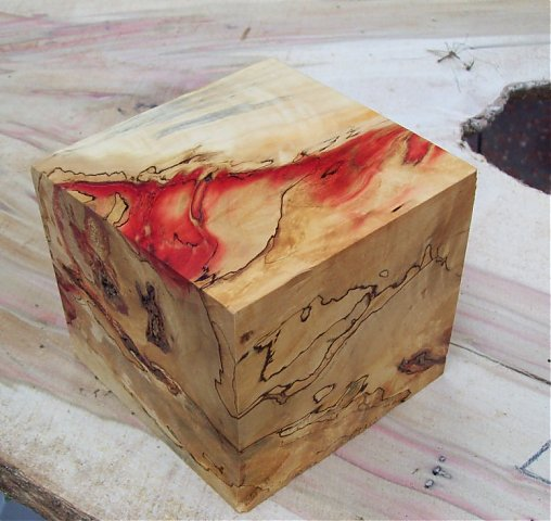 Turning Burls Wet Or Dry Woodworking Talk