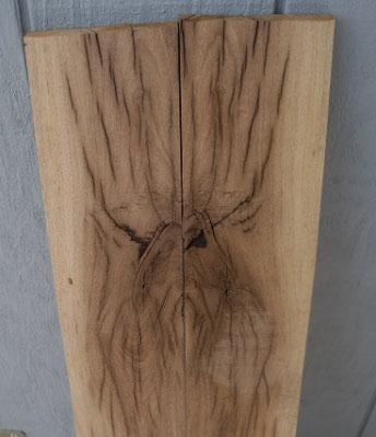 Name:  spider.JPG Views: 269 Size:  33.4 KB