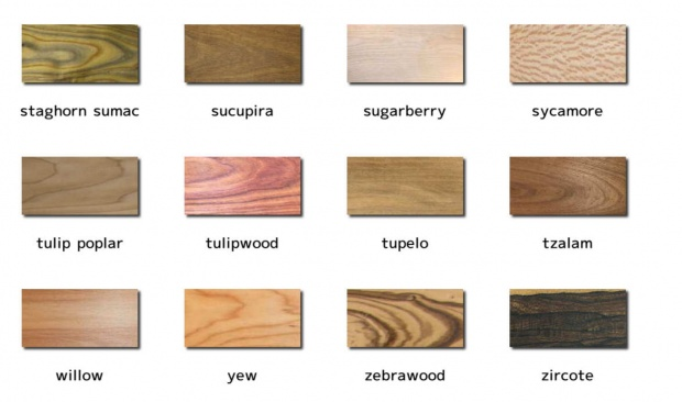 wood poster showing 240 different woods - Woodworking Talk