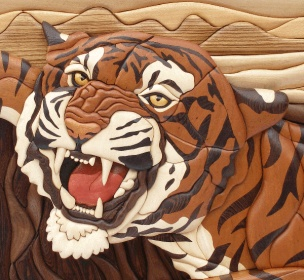Name:  tigertrailheadweb2.jpg