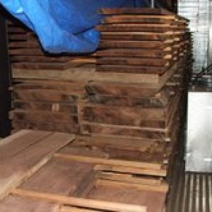 A load of 5 and 9/4 Black walnut