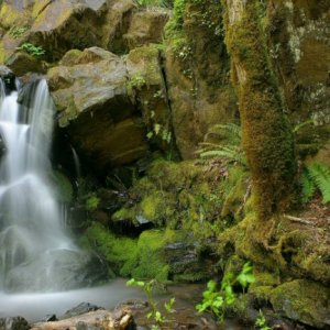 Small waterfall near the highway along the Umpqua river.