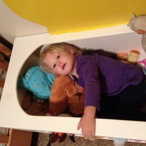 Toy Box filled with stuffed animals is a great place to relax.