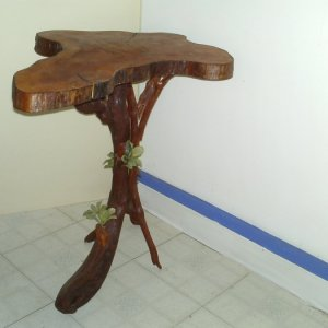 Tree Table- made from a real tree