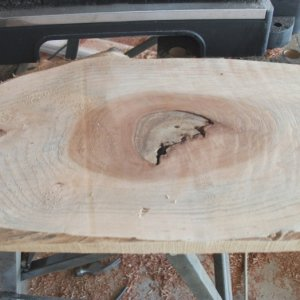 new planer test willow knot before
