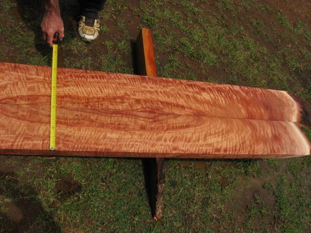 Queensland Maple- bookmatched boards(flindersia brayleyana)